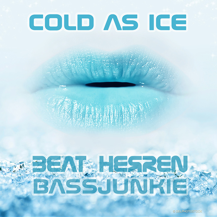 Beat Herren - Bassjunkie - Cold as Ice